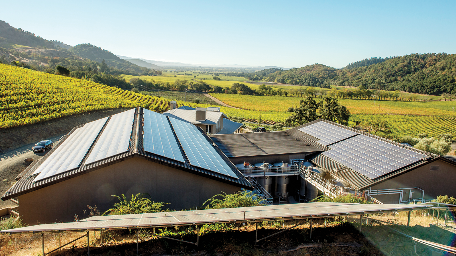 Wineries adopted green practices, such as installing solar panels.