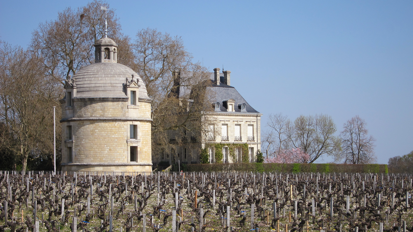 the 2015 bordeaux barrels diary ch226teau latour stirring