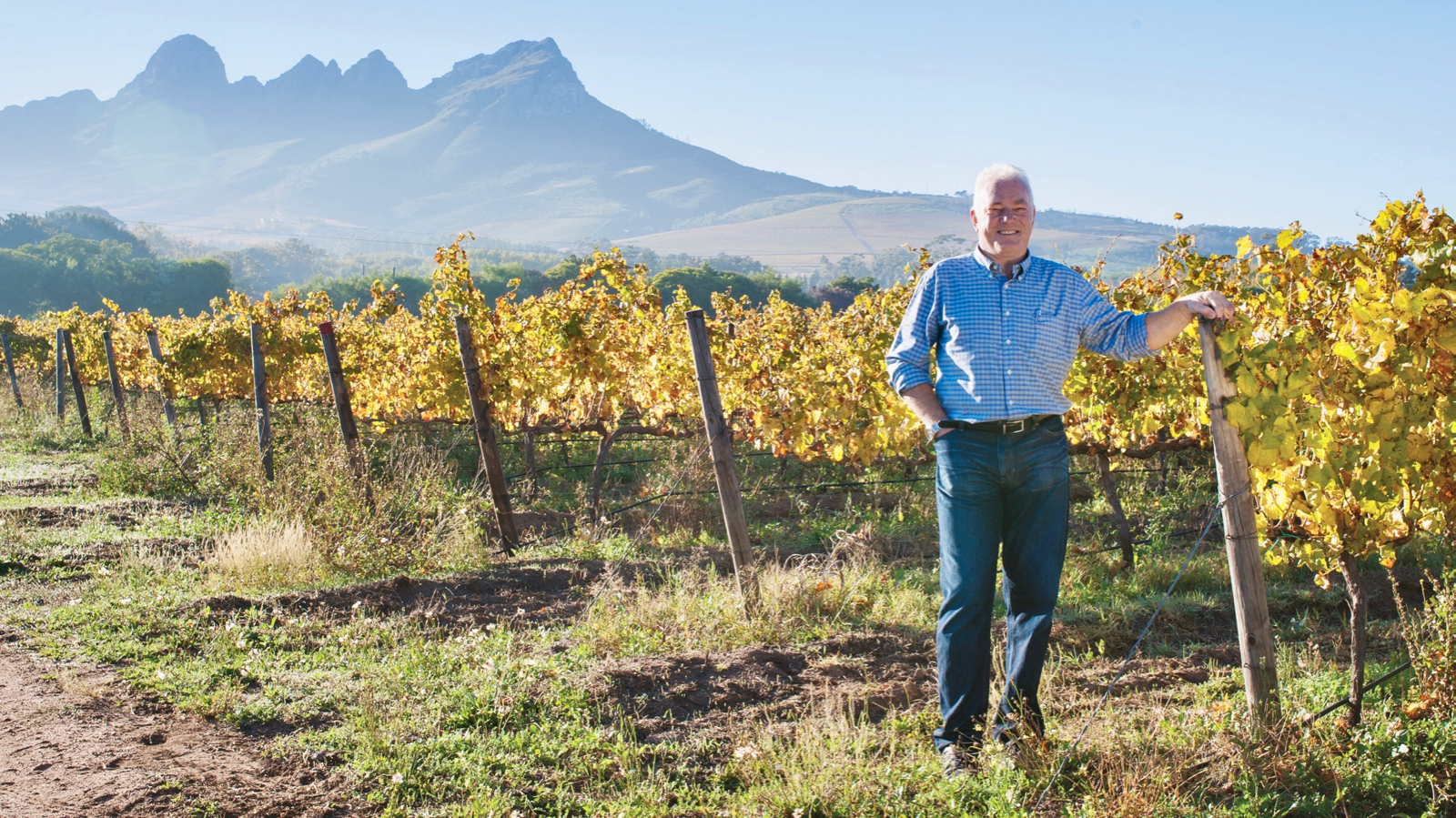 French wine firm buys majority stake in south africa 39 s ken for Jardin winery south africa