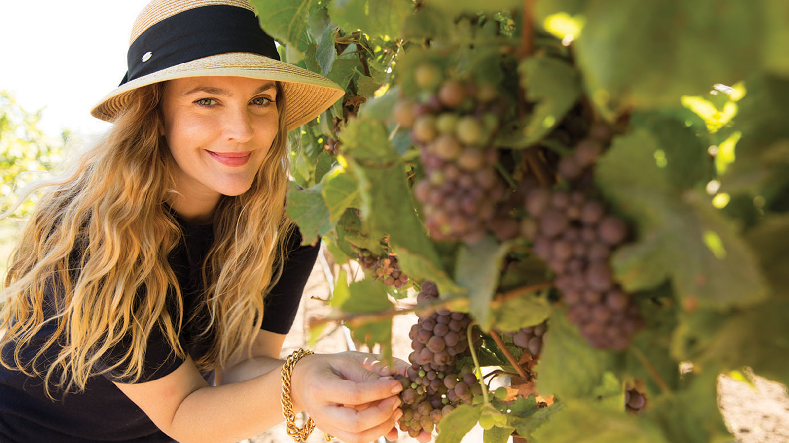 Unfiltered new wines for drew barrymore christie brinkley plus christie brinkley loves prosecco so much that shes making her own fred schrader introduces new sparky cigar and chinas silk road wine train geenschuldenfo Images
