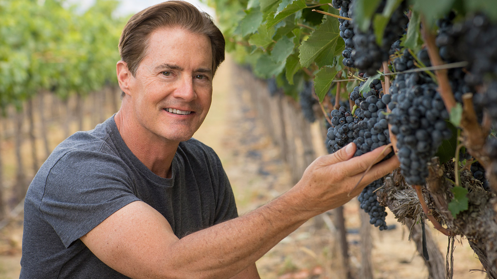 how to become a vintner
